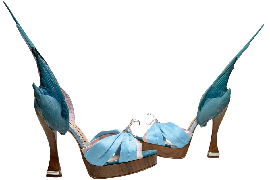 3._Caroline_Groves_b.1959_Parakeet_shoes_Photography_by_Dan_Lowe1