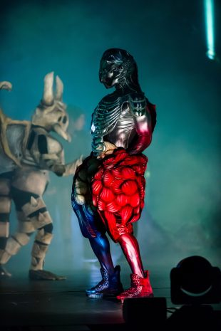 WOW - World of WearableArt. Wellington, NZ. 18 September 2017. Photo credit: Stephen AíCourt.