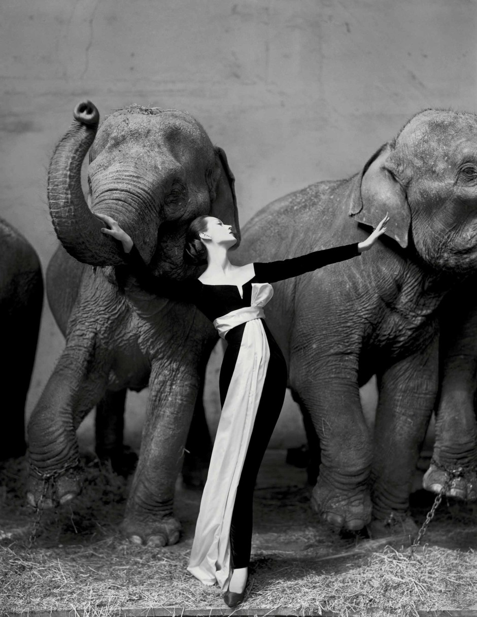 2010_PAR_05621_0016_000(richard_avedon_dovima_with_elephants_evening_dress_by_dior_cirque_dhiv).jpg