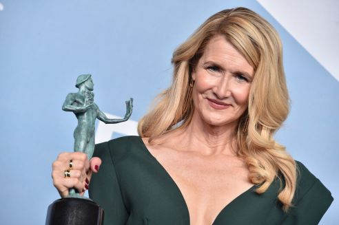 LOS ANGELES, CALIFORNIA - JANUARY 19: Laura Dern, winner of Outstanding Performance by a Female Actor in a Supporting Role for 'Marriage Story,' poses in the press room during the 26th Annual Screen Actors Guild Awards at The Shrine Auditorium on January 19, 2020 in Los Angeles, California. 721430 (Photo by Gregg DeGuire/Getty Images for Turner)