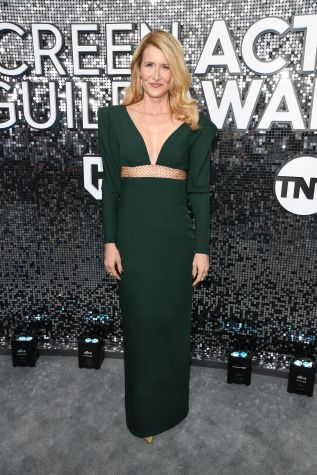LOS ANGELES, CALIFORNIA - JANUARY 19: Laura Dern attends the 26th Annual Screen Actors Guild Awards at The Shrine Auditorium on January 19, 2020 in Los Angeles, California. 721336 (Photo by Kevin Mazur/Getty Images for Turner)
